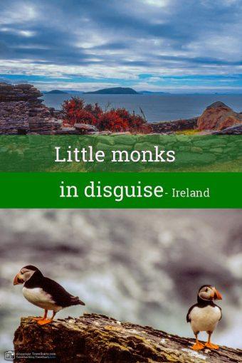 Little monks in disguise – Ireland