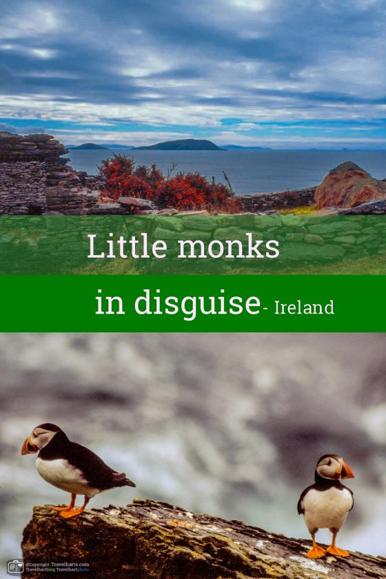 Little monks in disguise – Ireland